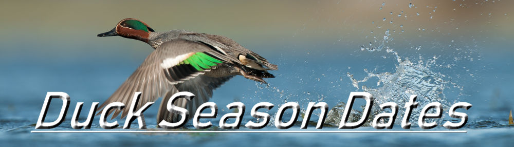 Tennessee Duck Season Dates | Mississippi Duck Season Dates | Oregon Duck Season Dates