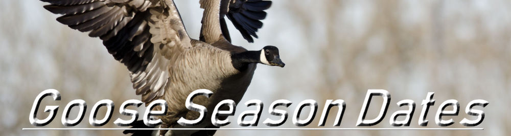 Oregon Goose Season Dates